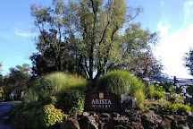 Arista Winery, Healdsburg, United States