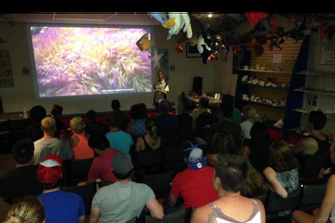 Reef Teach, Cairns, Australia