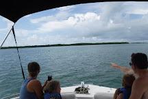 A Family Fun Boat Tour Company, Islamorada, United States
