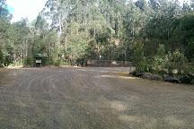 Wirrawilla Rainforest Walk, Toolangi, Australia