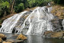 Sinharaja Forest Reserve, Galle, Sri Lanka