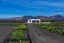 Wine Tours Lanzarote, Puerto Del Carmen, Spain