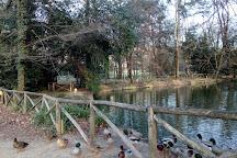 Parco del Neto, Calenzano, Italy