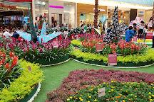 Agora Mall, Santo Domingo, Dominican Republic