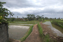 The North Trek, Hsipaw, Myanmar