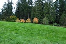 Capilano River Regional Park, North Vancouver, Canada