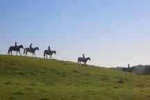 Banner Equestrian Centre, Ennis, Ireland