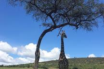 Karibu Safaris In Kenya, Nairobi, Kenya