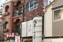 Asakusa Little Theater, Asakusa, Japan