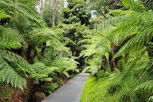 Australian National Botanic Gardens, Canberra, Australia