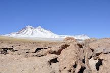 Laguna Cejar, San Pedro de Atacama, Chile