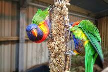 Kirkley Hall Zoological Gardens, Ponteland, United Kingdom