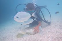 Diving Cala Mariolu, Baunei, Italy