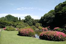 Shinjuku Gyoen National Garden, Shinjuku, Japan