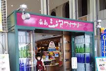 Hiroshima Miyoshi Winery, Miyoshi, Japan
