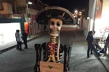 Amora Mexico, San Jose del Cabo, Mexico