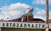 Центральная Районная Больница Пермского Муниципального Района, шоссе Космонавтов на фото Перми