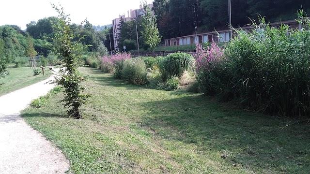 Parc De Sanzy