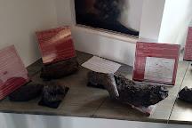 Volcano House - Museo Vulcanologico Dell'Etna, Nicolosi, Italy