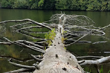 Cliffside Lake Recreation Area, Highlands, United States