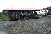 El Palacio del Barbas, Filandia, Colombia