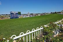 Rosehill Gardens Racecourse, Rosehill, Australia