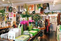 The Island Shop, Hamilton, Bermuda