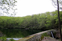 Black Rock Forest Consortium, Cornwall, United States