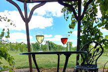 Lost Creek Vineyard, Marthasville, United States