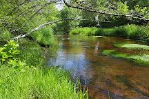 Lyman Reserve, Bourne, United States