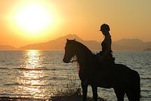Salt Lake Stables Horse Riding Kos, Marmari, Greece