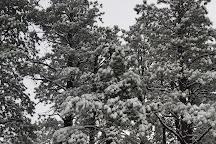 Flagstaff Snow Park, Flagstaff, United States