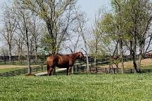 Taylor Made Farm, Nicholasville, United States