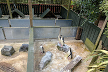Penguin Place, Dunedin, New Zealand