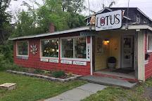 Lotus Fine Art and Design, Woodstock, United States