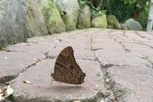 Schmetterlingspark Fehmarn GmbH, Burg auf Fehmarn, Germany
