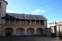 Anes en Culotte, Saint Martin de Re, France