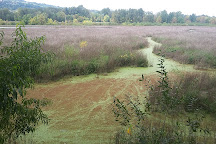 Oaks Bottom Wildlife Refuge, Portland, United States