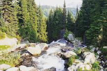 Myrtle Falls, Paradise, United States