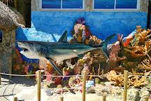 Rodadero Sea Aquarium and Museum, Santa Marta, Colombia