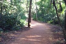 Horto Florestal de Rondonopolis, Rondonopolis, Brazil