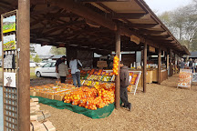 Outeniqua Farmers' Market, George, South Africa