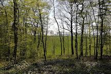 Parc naturel regional de la Haute Vallee de Chevreuse, Chevreuse, France