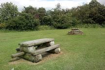 Merkinch Local Nature Reserve, Inverness, United Kingdom