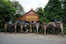Pattaya Elephant Village, Pattaya, Thailand