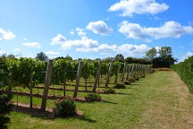 Winbirri Vineyards, Norwich, United Kingdom