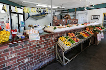 Motts Channel Seafood, Wrightsville Beach, United States