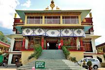 Dhakpo Shedrupling Monastery, Kullu, India