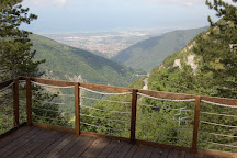 L'Orto Botanico Pellegrini Ansaldi, Massa, Italy