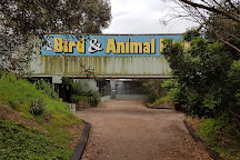 Esperance Bird and Animal Park, Esperance, Australia